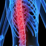 Neck, Back & Spinal Injuries